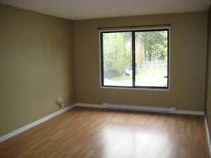 2 bedroom apartment in Logan lake