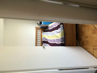 1 Bedroom Downtown, Perfect for McGilll Students
