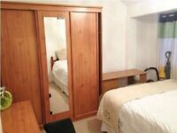 Double Room close to Bruce Grove Station