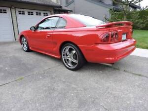 1997 Ford Mustang Cobra Other