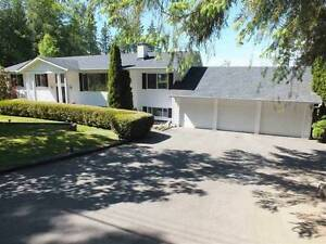 Very liveable house in south surrey