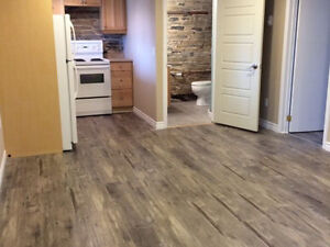 1 bedroom Country Apartment 17 kms north of 401