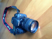 Perfect Canon 7D Kit For Sale