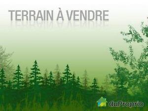 100 000$ - Terrain récréatif à vendre à Mont-St-Michel