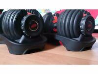 Bowflex 2-24 KG SelectTech Dumbbells (Pair)