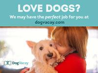 Dog Sitter Needed - Make $1,000+ Per Month