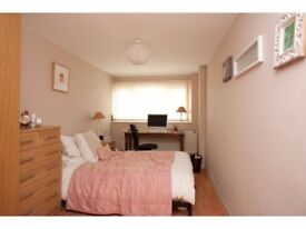 A very big double bedroom in a cosy house, available now!!
