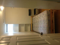 Two Rooms (One with private washroom) in York U Village