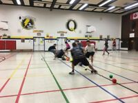 Dodge-ball (weekly drop-in)