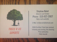 "Trees""r""us Experts 519-817-2867"