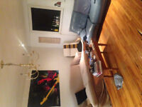 Downtown 3 Bedroom Summer Sublet - Really cheap rent