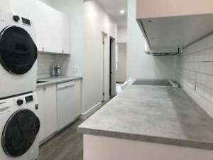 Brand new 3bed 2washroom suite in downtown