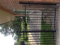 Black rod iron fence
