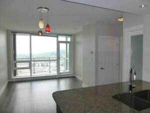 Beautiful 2 bedroom apartment in Coquitlam centre