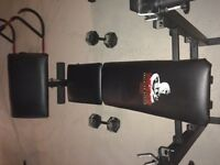 weider training system Bench ONLY / punching bag / ab machine