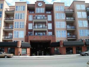 IMMACULATE, VERY SPACIOUS 2 BEDROOM CONDO DOWNTOWN