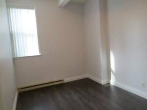 1 bdrm w/ private bathroom available in 2.5 bdrm loft style apt