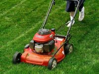 Lawn mowing needs and fall clean up