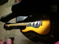 Fender with case (Mexican made)