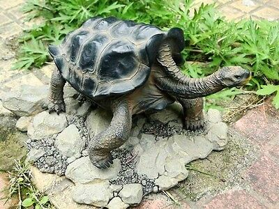 Galápagos Galapagos Giant Land Tortoise Turtle Resin Model Figurine 18cm Color A for sale  Shipping to Canada