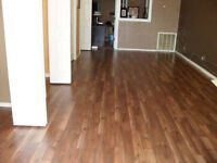 PROFESSIONAL LAMINATE INSTALLATIONS 226-260-2810