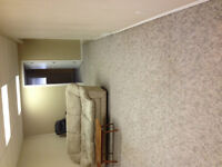 Basement in Camrose