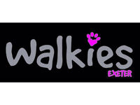 Walkies, Exeter. Dog Walking / Day Care / Home Boarding 🐾