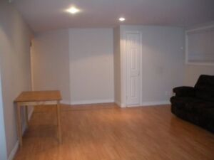 Large and spacious 1 bedroom apartment (1000sq feet.)