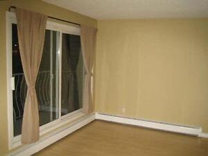 Large 2 floor 2 bedroom apartment with balcony