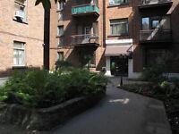 Appartement 3 1/2 meublé +