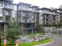 2br 2ba - 780 sq ft - Green - #304 7488 Byrnepark Way, Burnaby