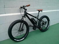 eRanger Electric MID DRIVE Fat Bike 48v 750w
