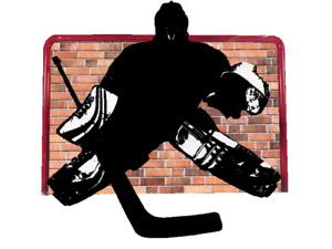 Goalie needed for indoor ball hockey