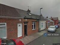 1 bedroom house in Hendon Burn Ave, Sunderland, SR2 (1 bed)