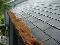 GUTTER CLEANING!902.579.1771! BOOK NOW