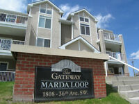 Sept 1- trendy loft suite in Marda Loop