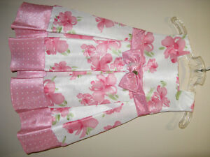 Little Girls Fancy Dresses Size 2-3T Spring/Summer Part 2 Sarnia Sarnia Area image 2