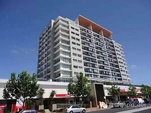 Brand new ocean view top floor luxury apt for rent in Marouba Maroubra Eastern Suburbs Preview