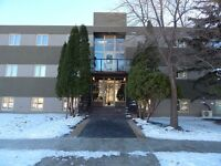 Walk to the U of M from this beautifully renovated condo.