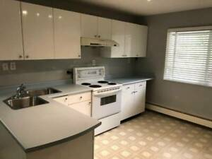 Ground Level  Renovated 2 BR Suite Available March 15