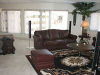 1 BEDROOM + DEN DOWNTOWN RIVER VIEW & GYM/POOL