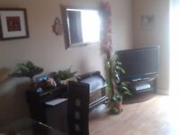 Beautiful House for rent in posh location M5/Bus 87 to Birmingham/Train Station/New Built