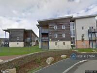 2 bedroom flat in Sefton House, Tuckingmill, Camborne, TR14 (2 bed)