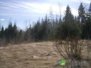 134 500$ - Terre à bois à vendre à Gaspé