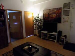 Beautiful Summer Sublet - 1 Minute from McGill