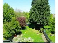 PRETTY COSY SINGLE ROOM/CRYSTAL PALACE AREA /PROFESSIONAL kITCHEN/ HUGE GARDEN&GYM APPLIANCES