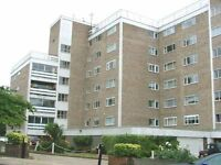 LARGE MODERN 1 DOUBLE BEDROOM FLAT TO RENT IN GOLDERS GREEN NW11