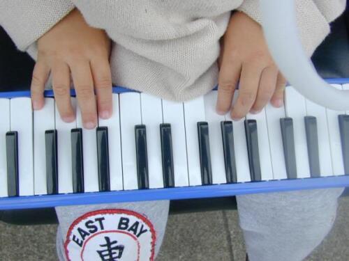 Traveler Melodica 32 keys full 2.5-octave range F2 C Surprise!!FREE Gift w/Pack