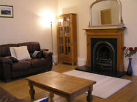 Very spacious central Edinburgh flat, ground floor, wifi, child cot & hi chair, garden. By meadowsd