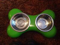 Lime green dog bowl